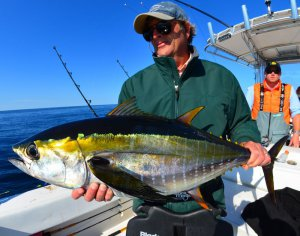 Cape Cod Offshore Longfin Tuna Reports
